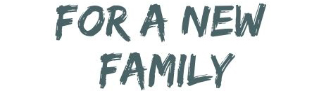 For a new Family